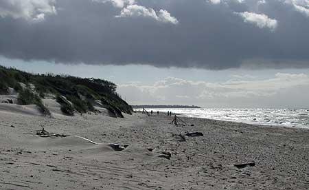 Weststrand auf Fischland-Darss