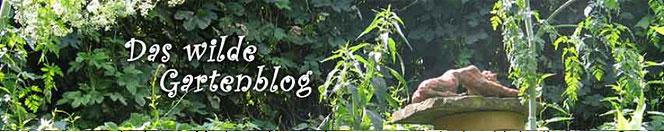 Banner-Gartenblog